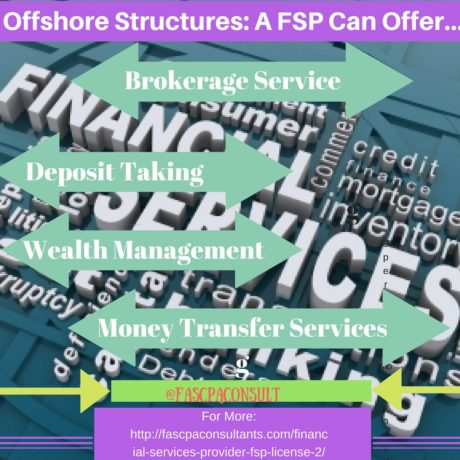 Financial Service Provider (FSP)